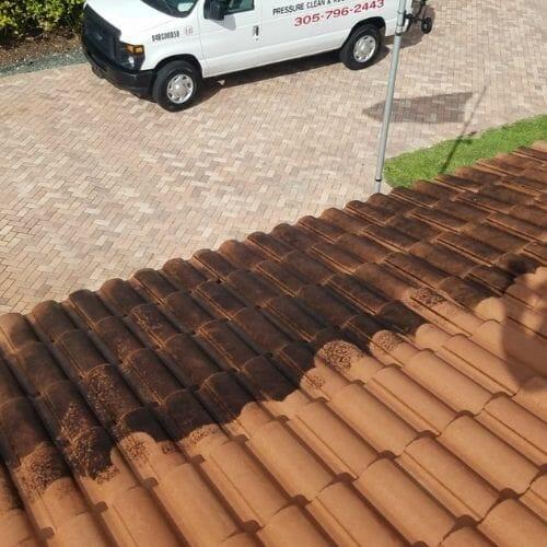 Roof Algae Miami